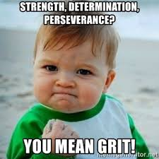 strength, determination, perseverance? You mean Grit! - baby   Meme  Generator
